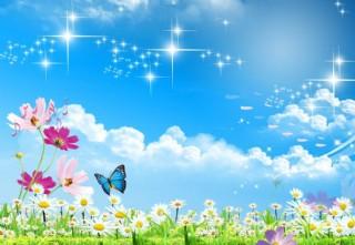 蓝天草地花朵